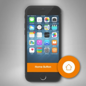 Home Button Reparatur